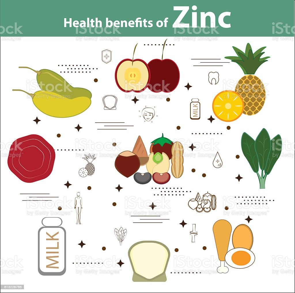 Health benefits of Zinc vector art illustration