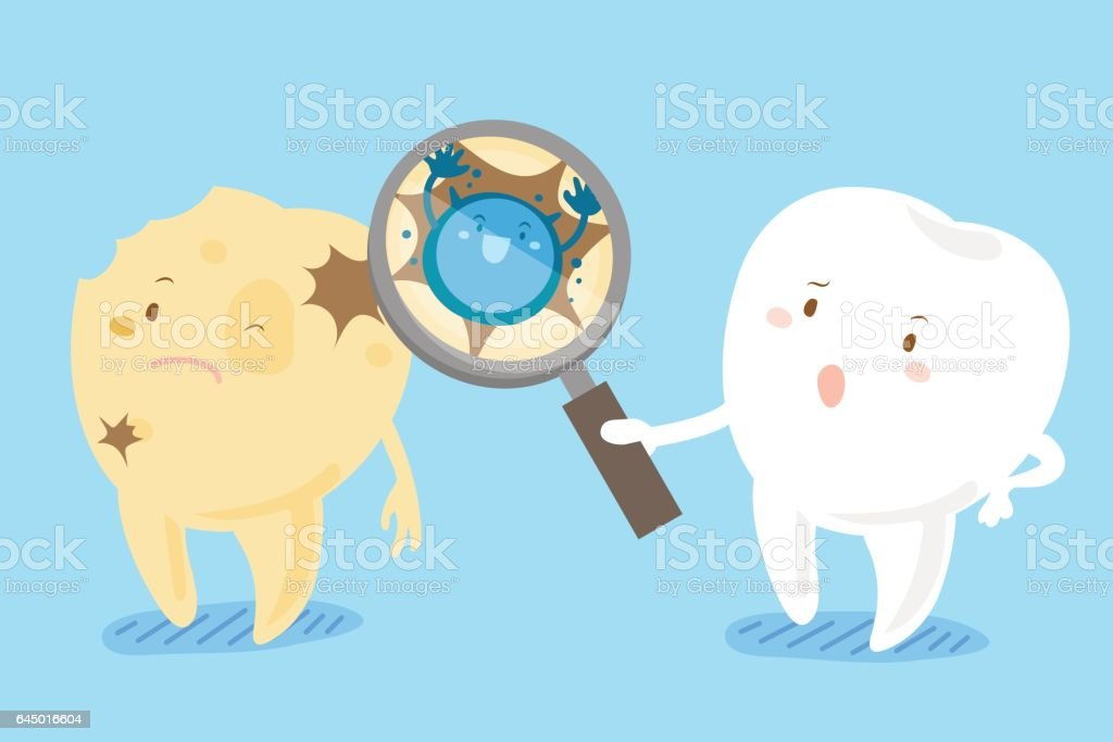 health tooth take magnifying vector art illustration