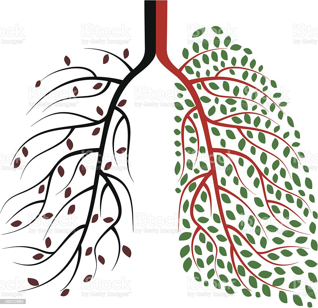 Healthy and Diseased Human Lungs Concept vector art illustration