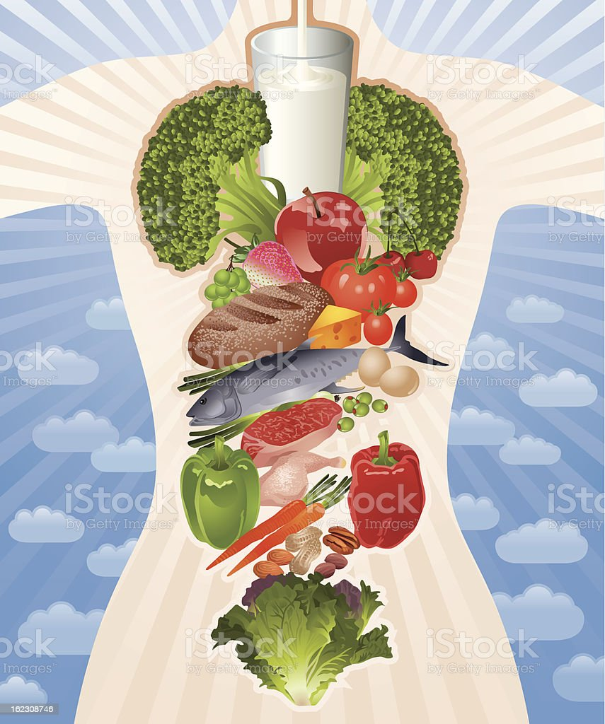 Healthy Body Composed by Healthy Food Vector vector art illustration