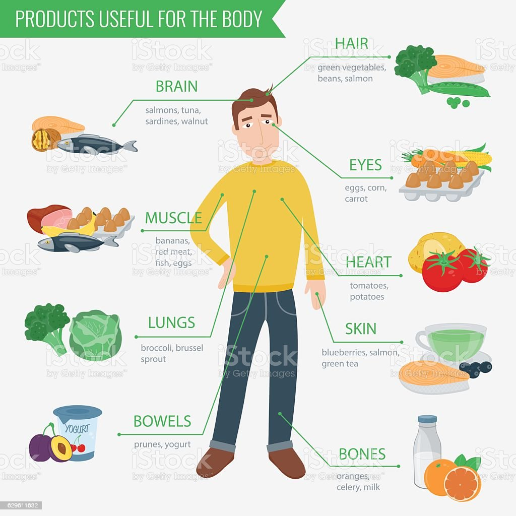 Healthy food for human body. Healthy eating infographic. vector art illustration