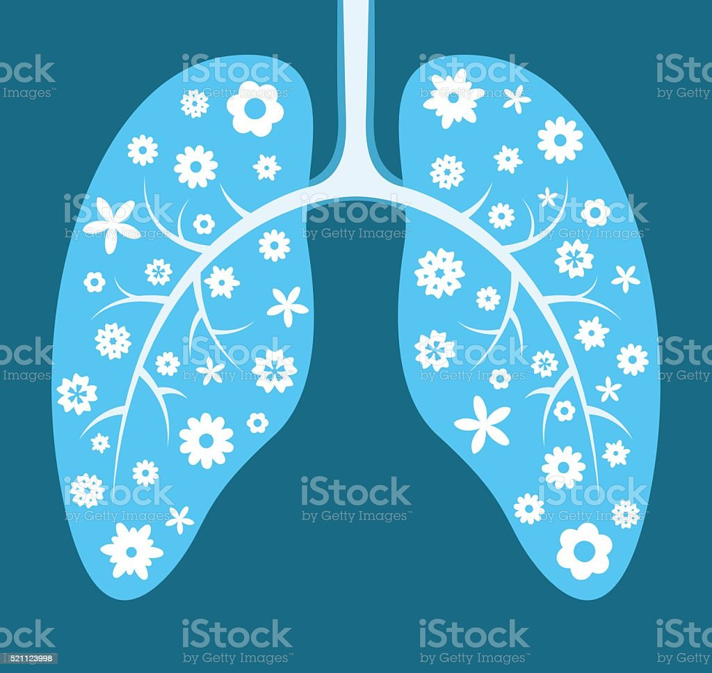 Healthy lungs vector art illustration