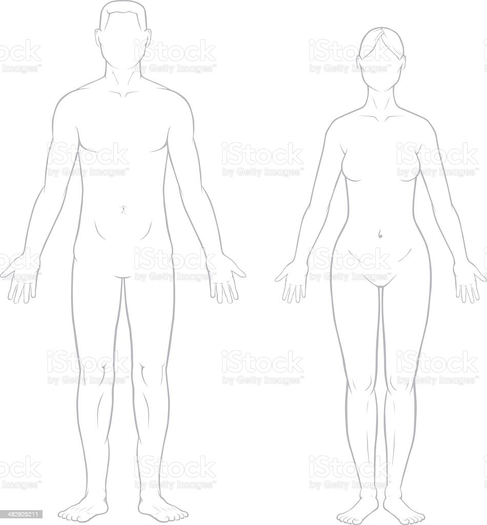 Healthy Male and Female Bodies vector art illustration