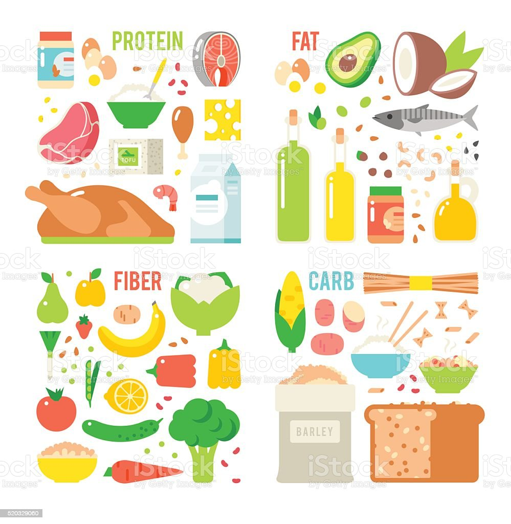 Healthy nutrition, proteins fats carbohydrates balanced diet, cooking, culinary and vector art illustration