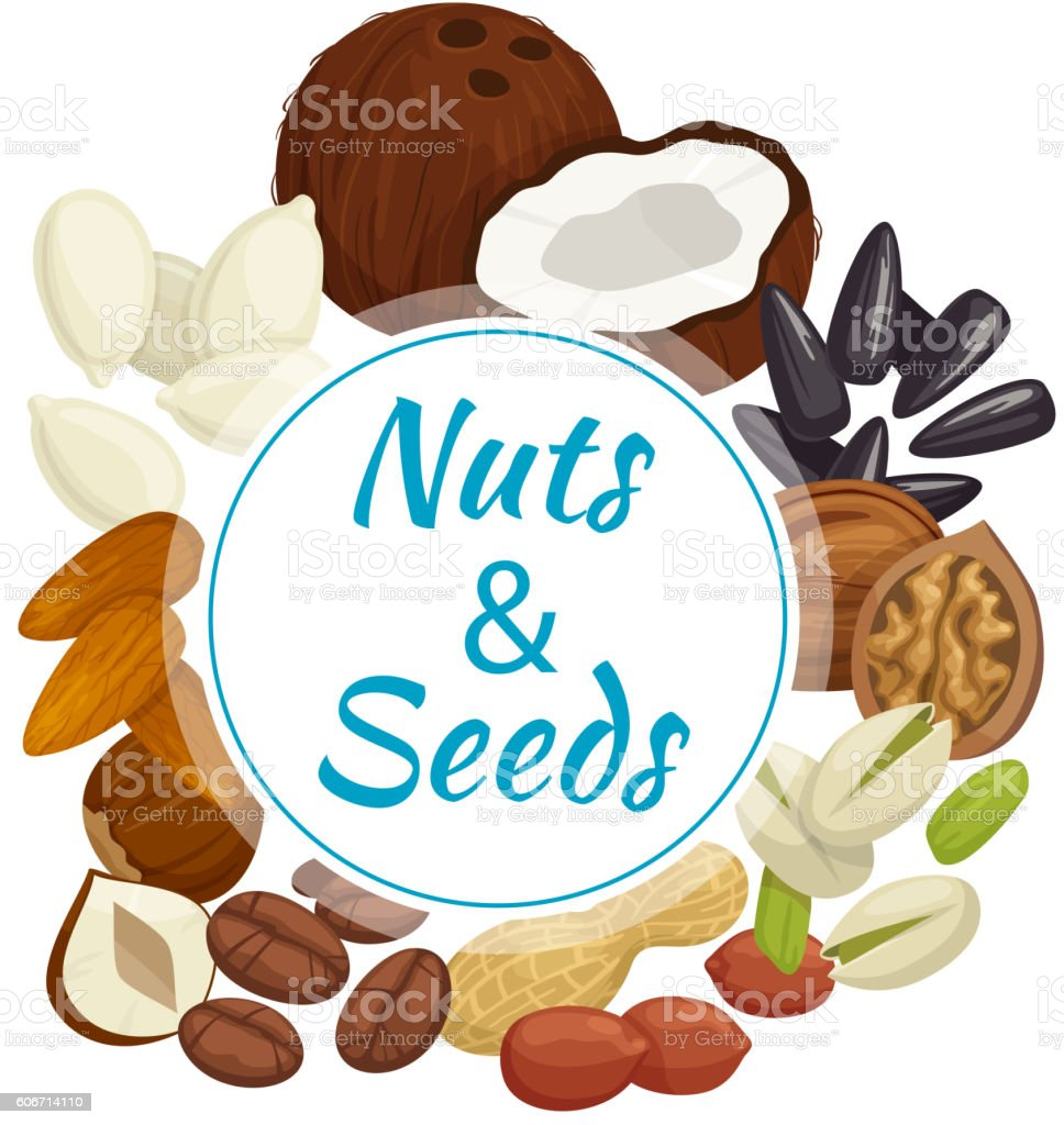 Healthy nuts, seeds and beans round badge vector art illustration