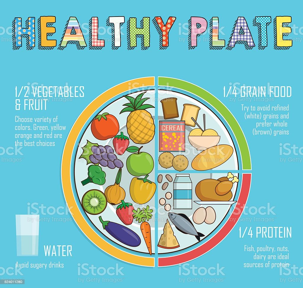 Healthy plate nutrition proportions vector art illustration