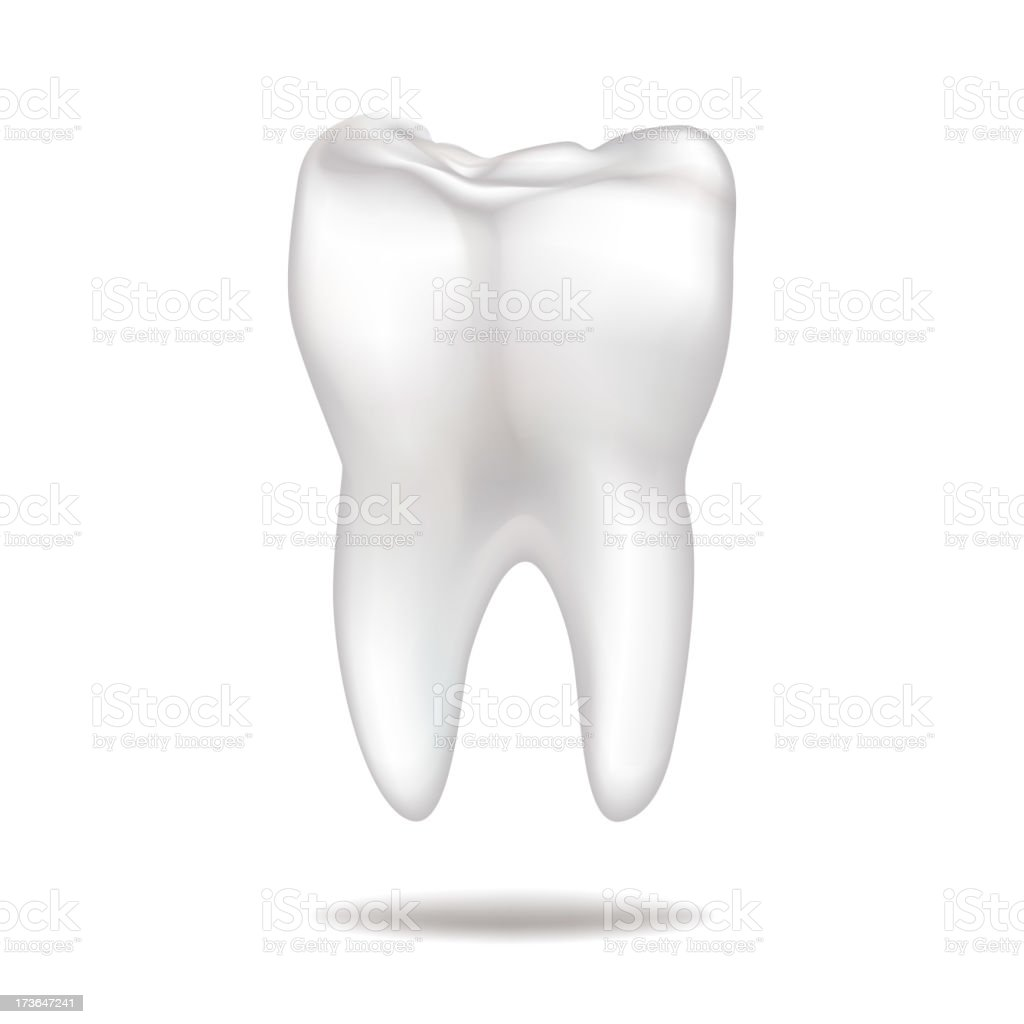 Healthy Tooth royalty-free stock vector art