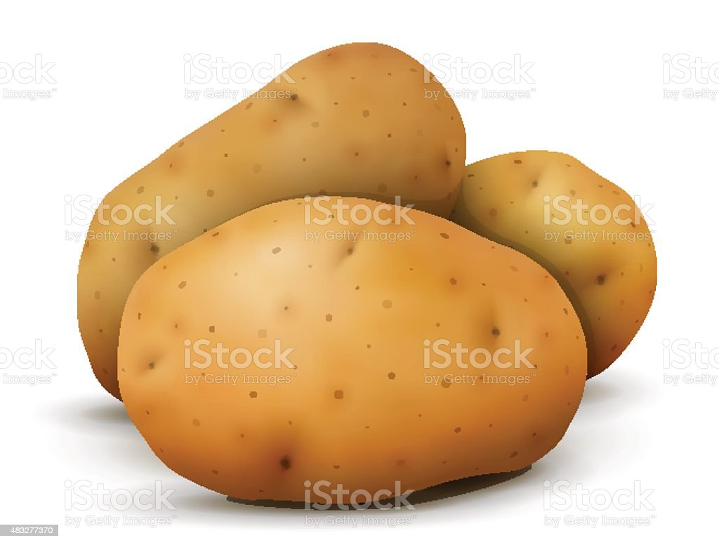 Heap of potato tubers close up vector art illustration