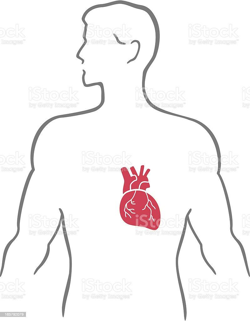 Heart and human body royalty-free stock vector art