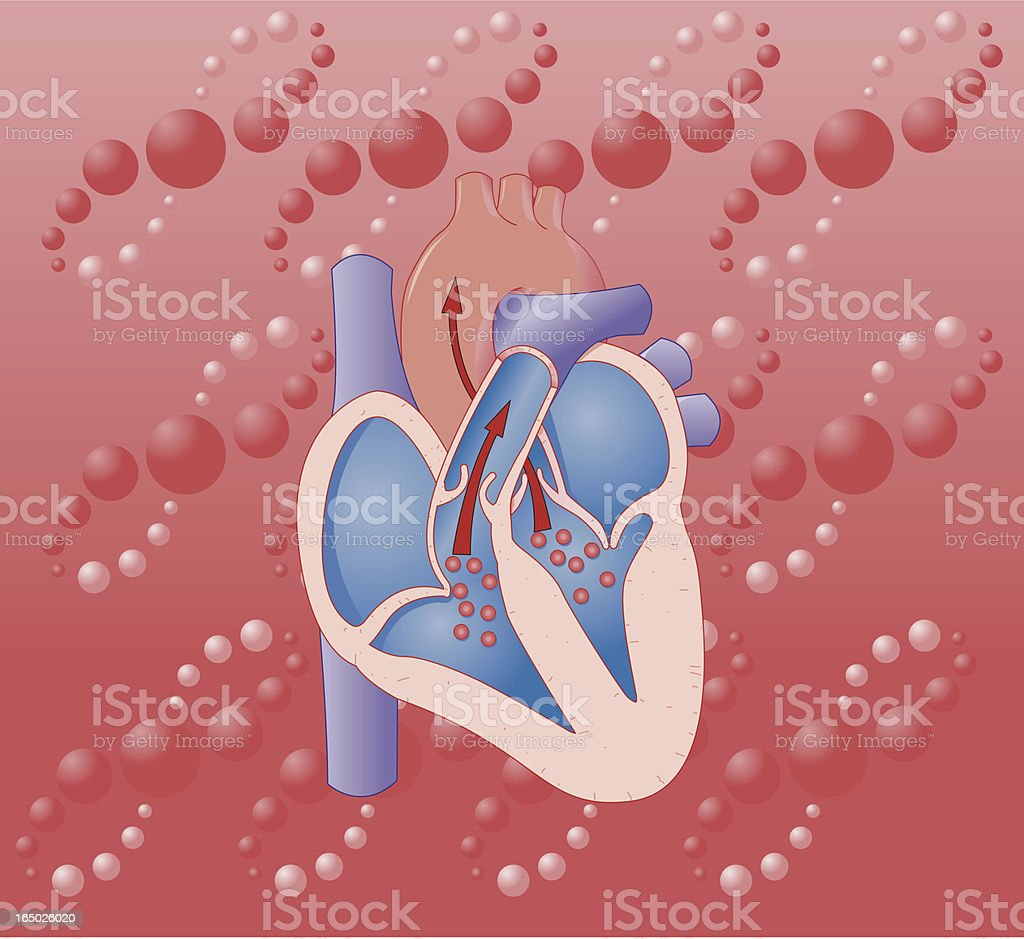 Heart Flow Illustration royalty-free stock vector art