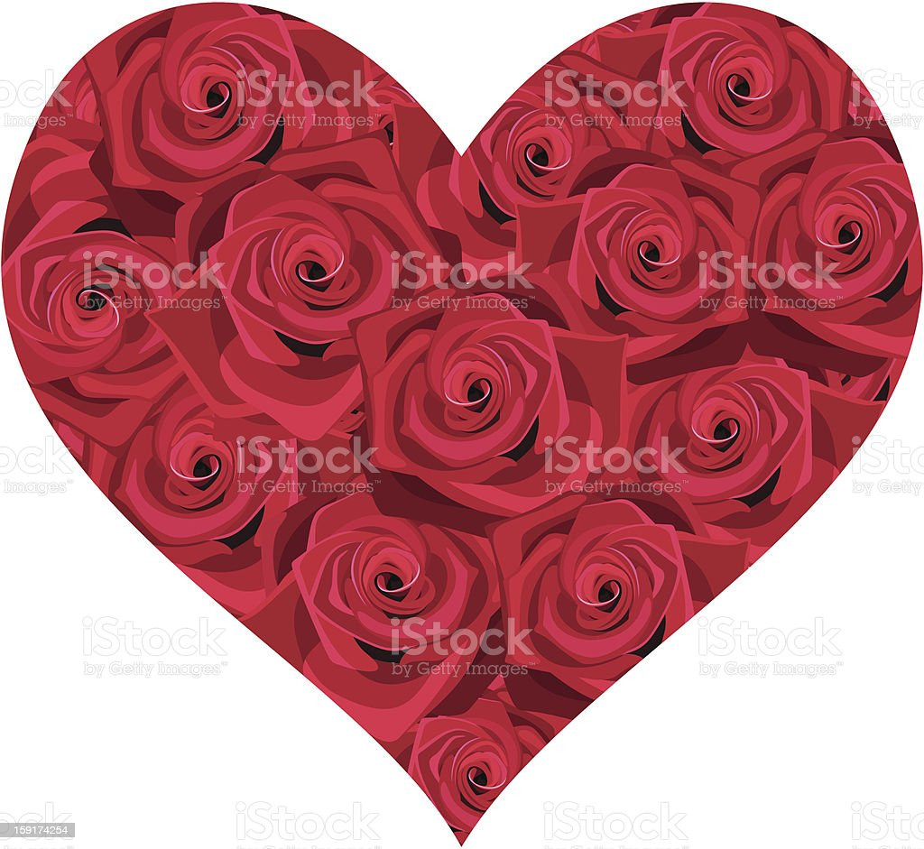 Heart of red roses. Vector illustration. royalty-free stock vector art