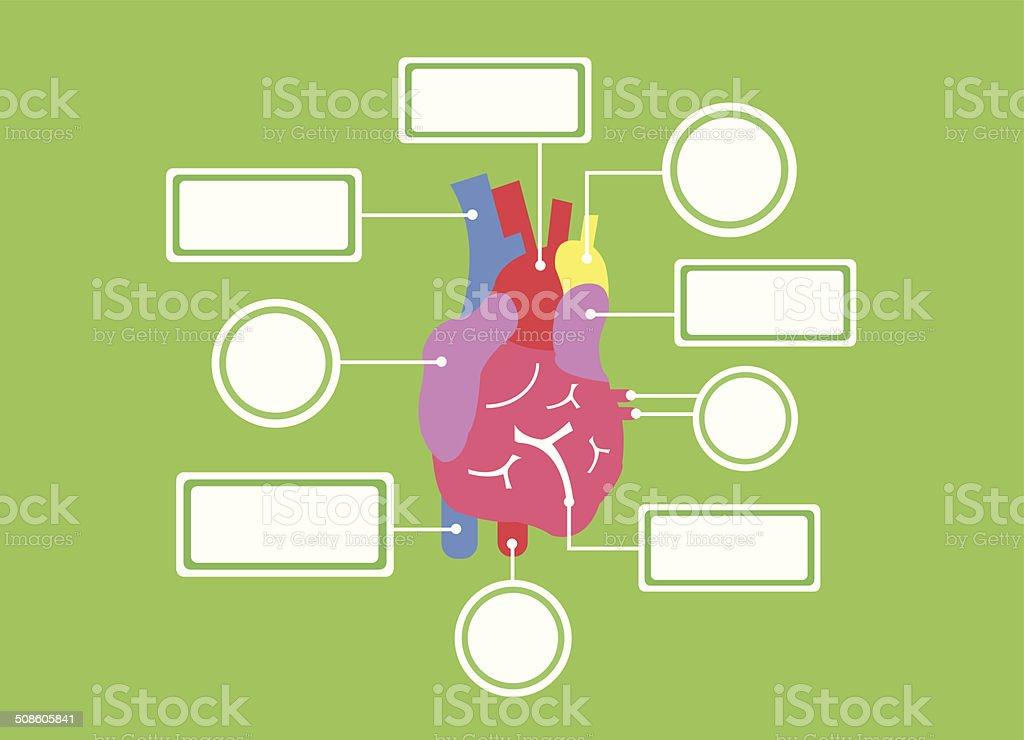 heart system vector cartoon vector art illustration