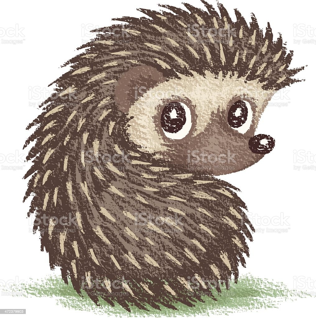 Hedgehog which looks at back royalty-free stock vector art