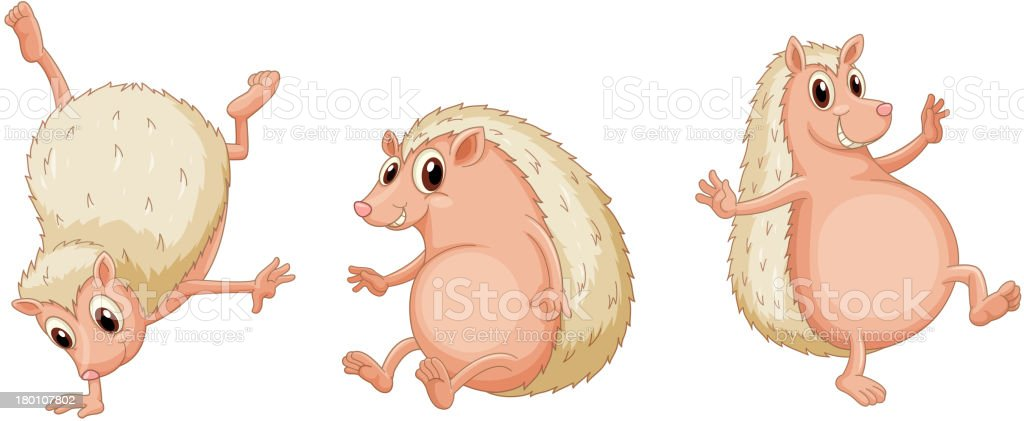 Hedgehogs royalty-free stock vector art