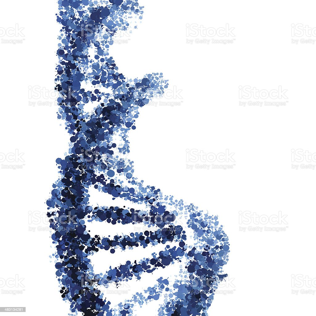 DNA helix vector isolated on white background vector art illustration