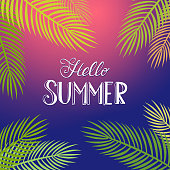 Hello Summer tropical background