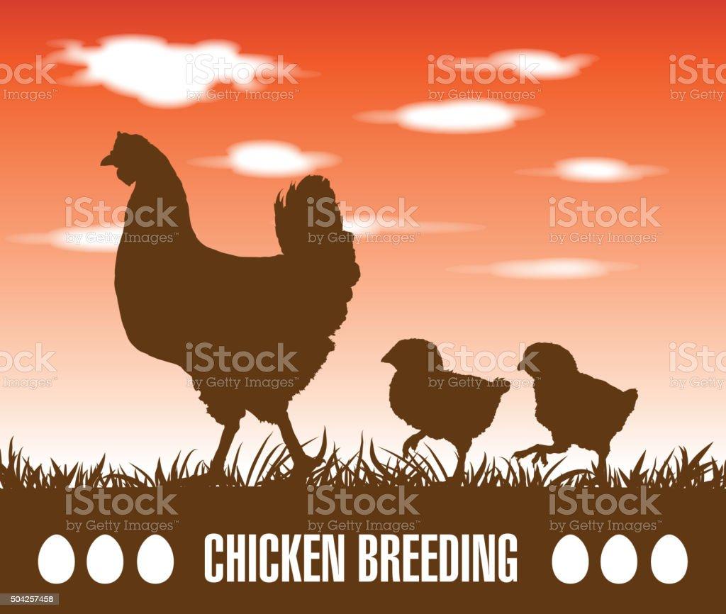 hen and chickens vector art illustration