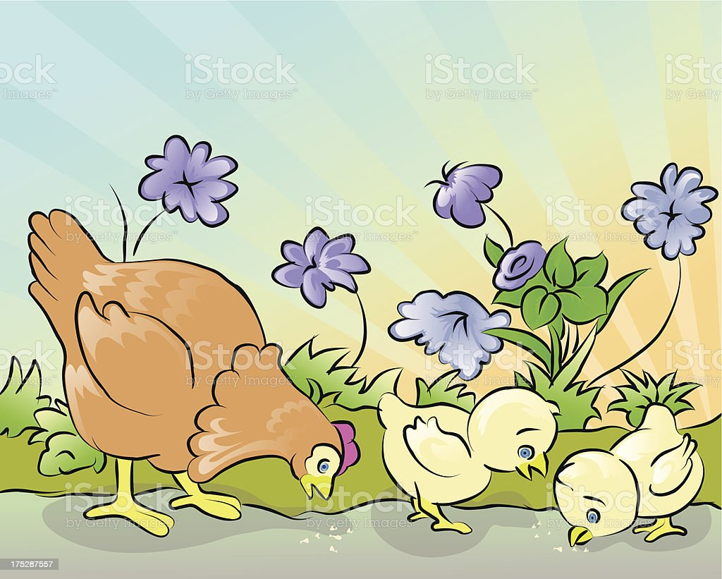hen and two chicken royalty-free stock vector art