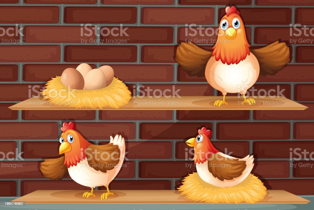 Hen laying eggs royalty-free stock vector art