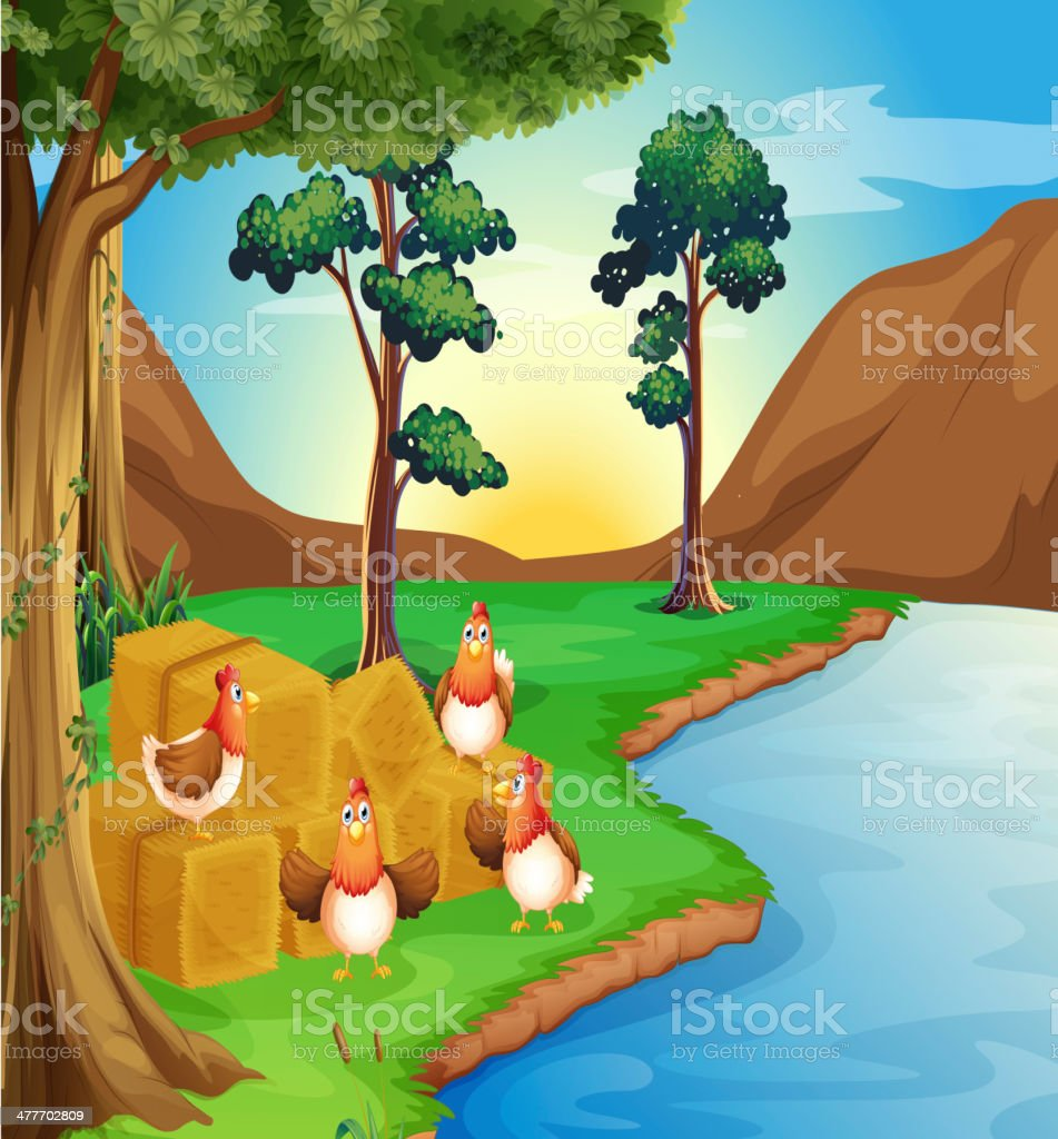 Hens near the river vector art illustration