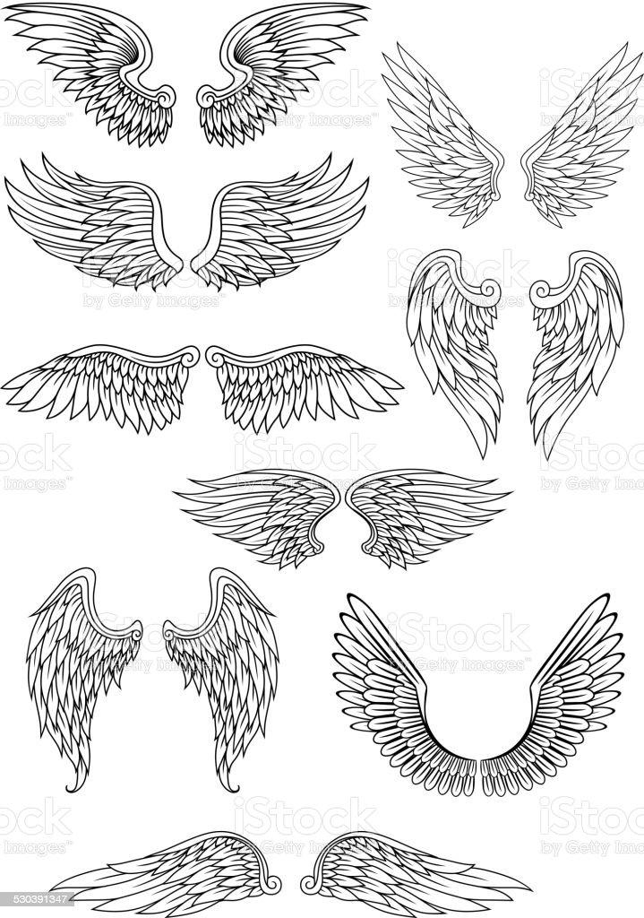 Heraldic bird or angel wings set vector art illustration