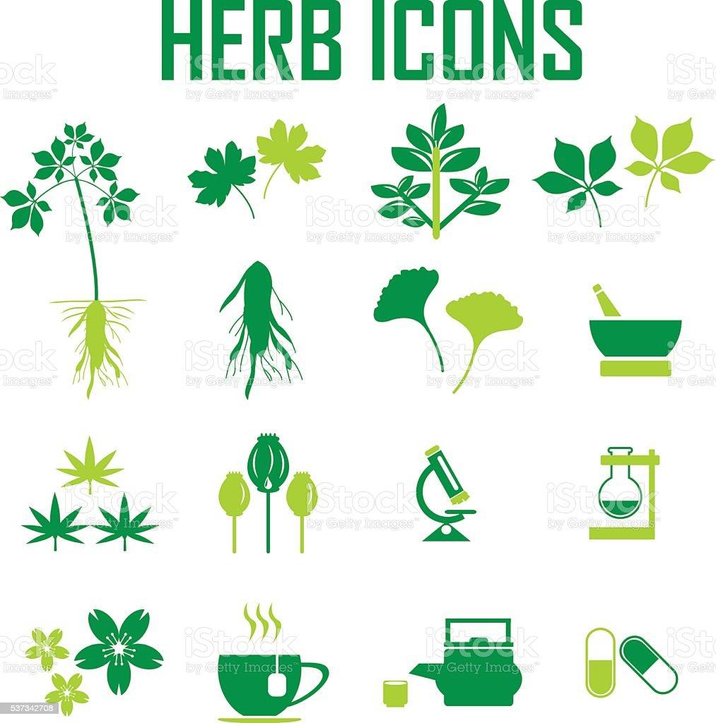 herb icons, mono vector symbols vector art illustration