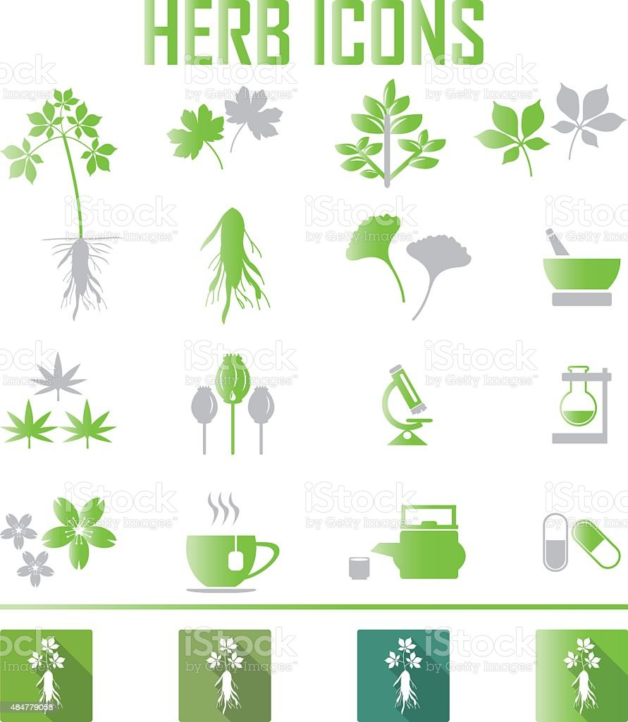 herb icons. vector illustration eps 10 vector art illustration