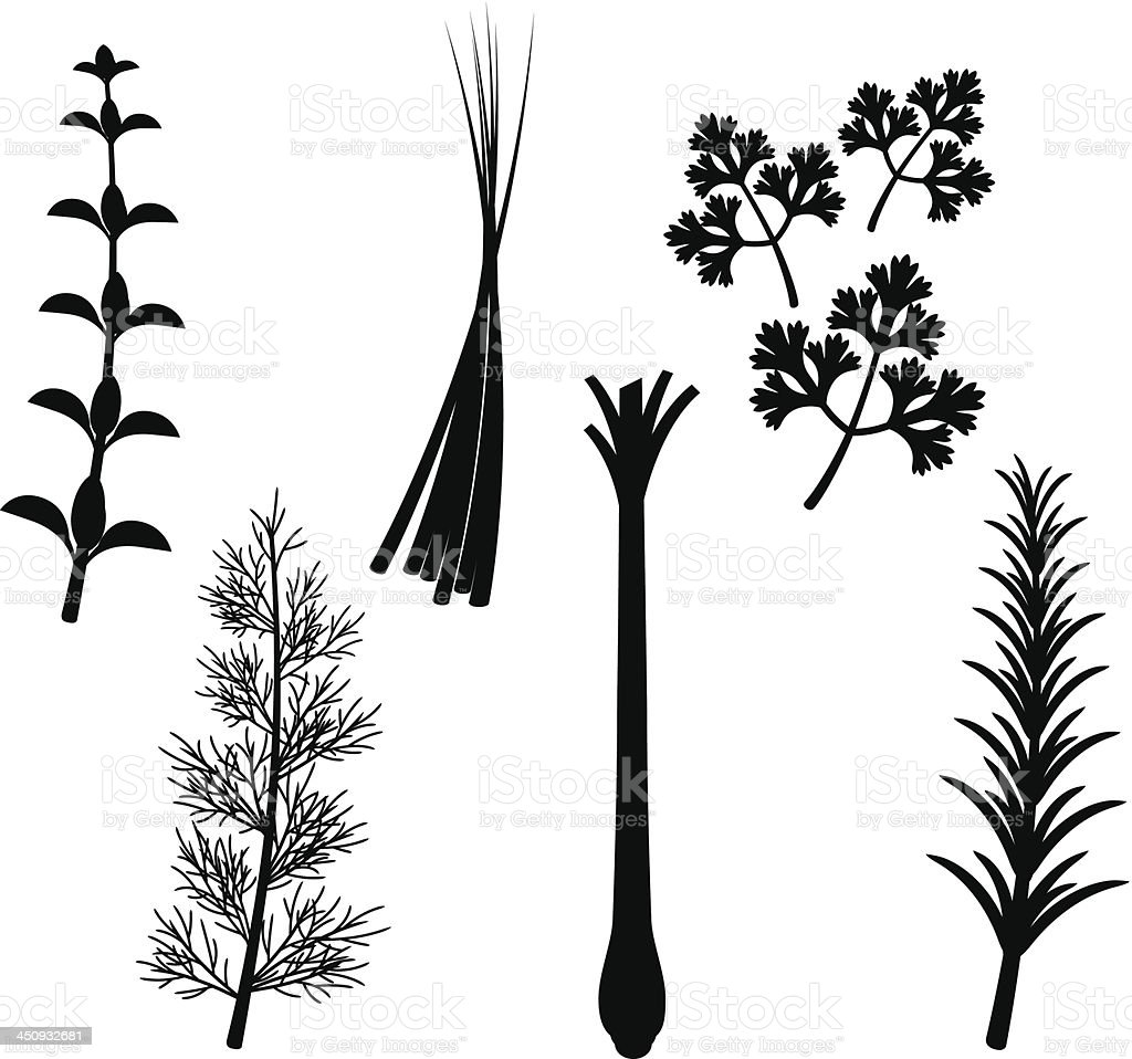 Herb Silhouette Set vector art illustration
