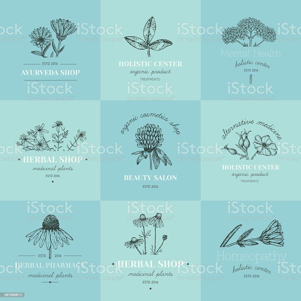 Herbal logos. vector art illustration