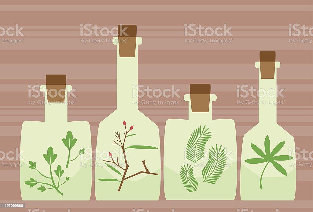 Herbal Medicine Cabinet royalty-free stock vector art