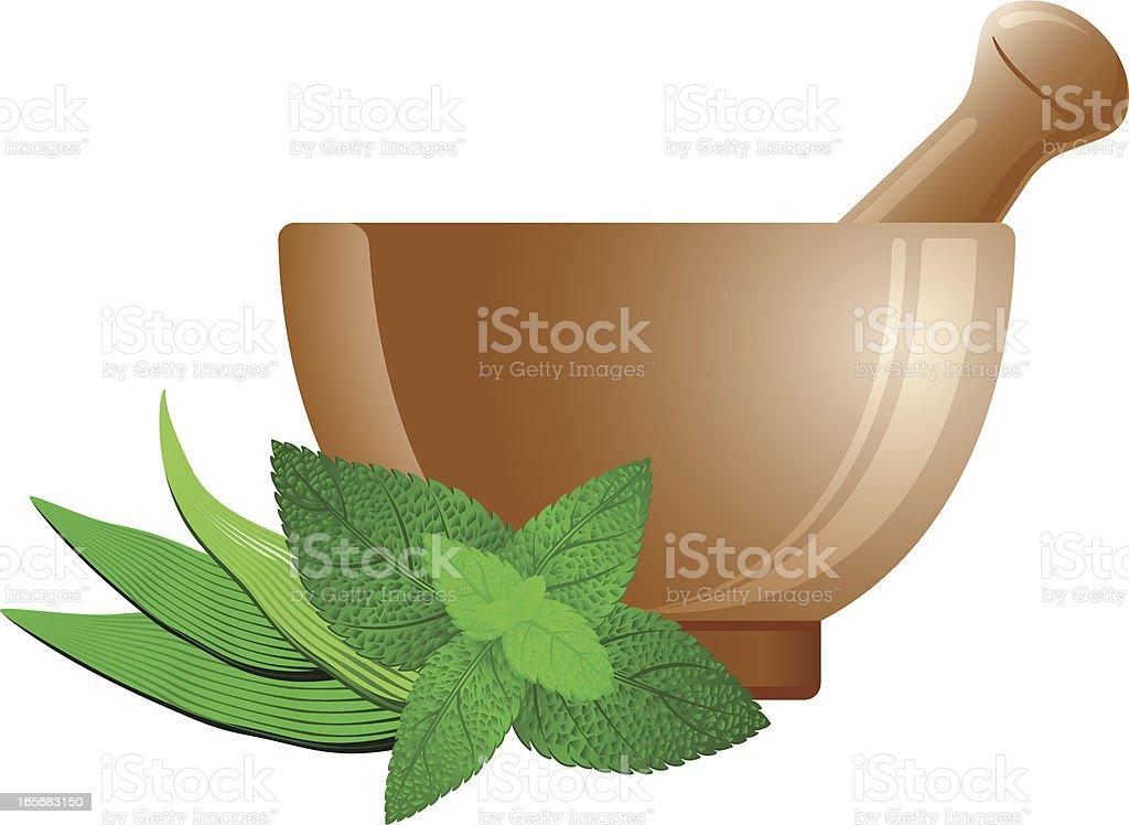 Herbal medicine icon royalty-free stock vector art