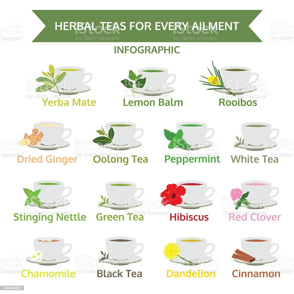 herbal teas for ailment, healthy food, herb vector vector art illustration