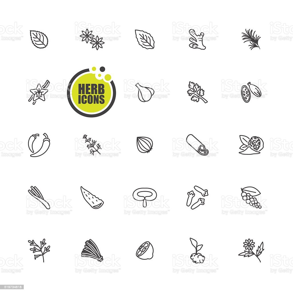 Herbs and spices icon vector art illustration