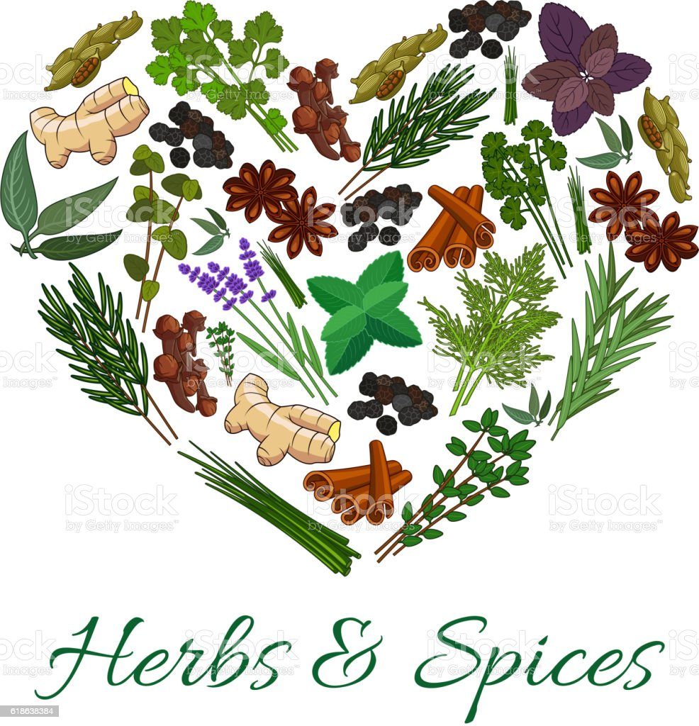 Herbs and spices icons in heart shape emblem vector art illustration