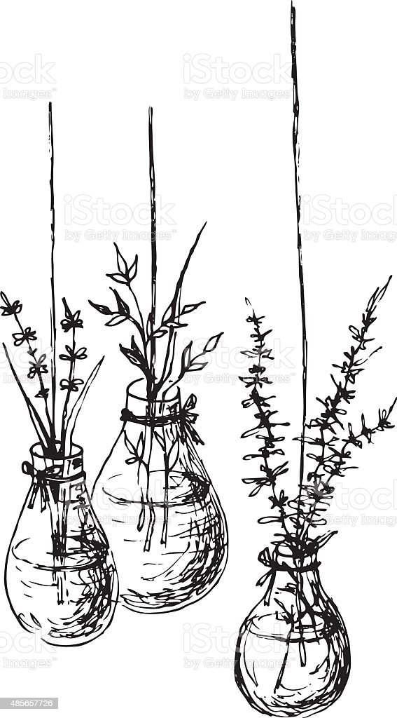 Herbs In Hanging Vases Ink Drawing vector art illustration