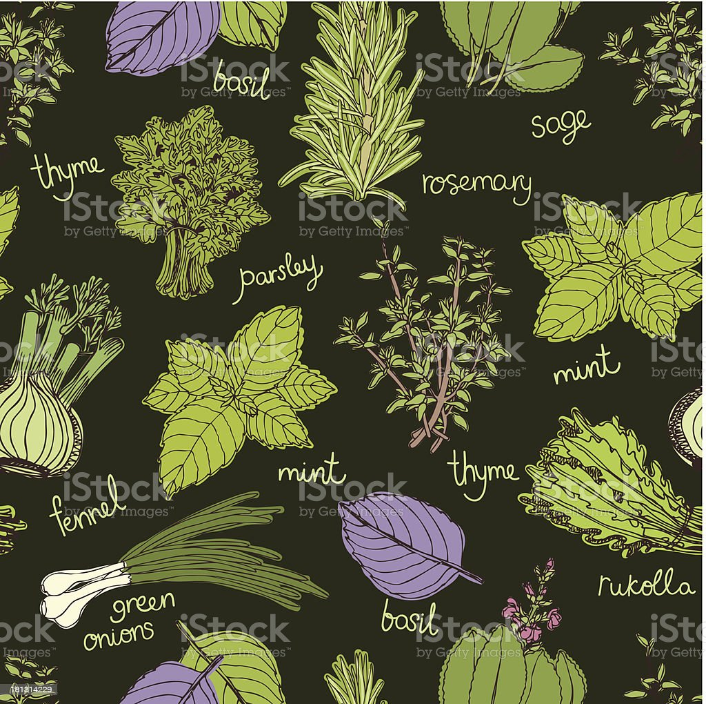 Herbs on the dark background pattern royalty-free stock vector art