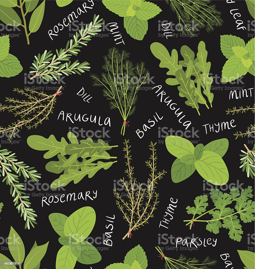 Herbs pattern vector art illustration