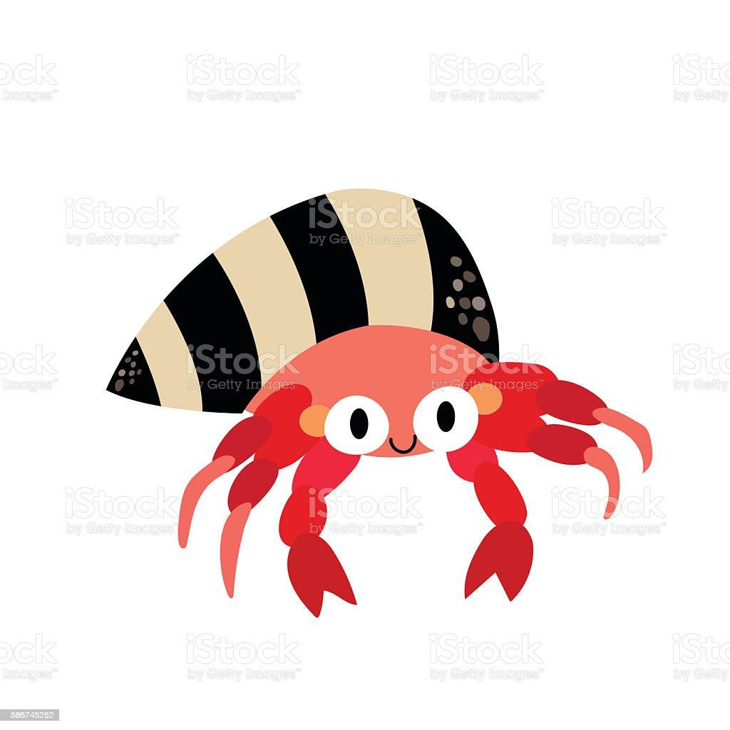 hermit crab animal cartoon character vector illustration stock