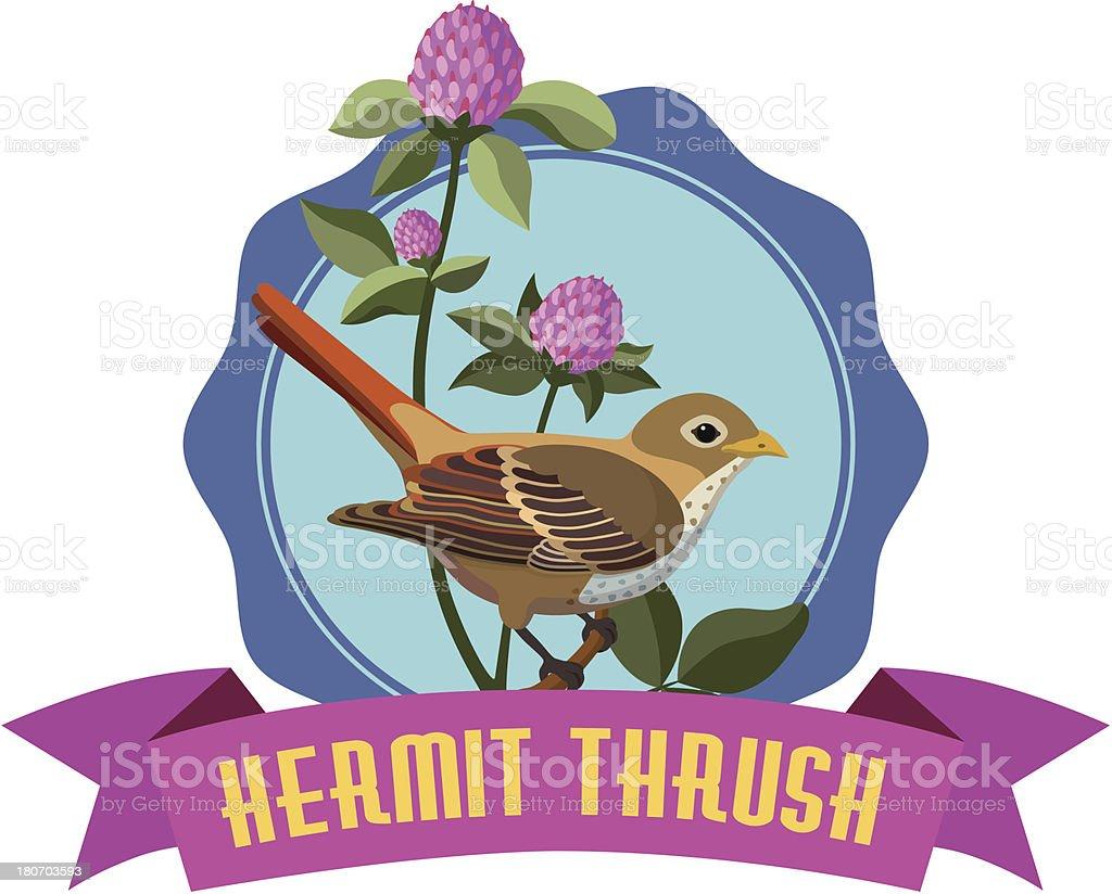 hermit thrush royalty-free stock vector art