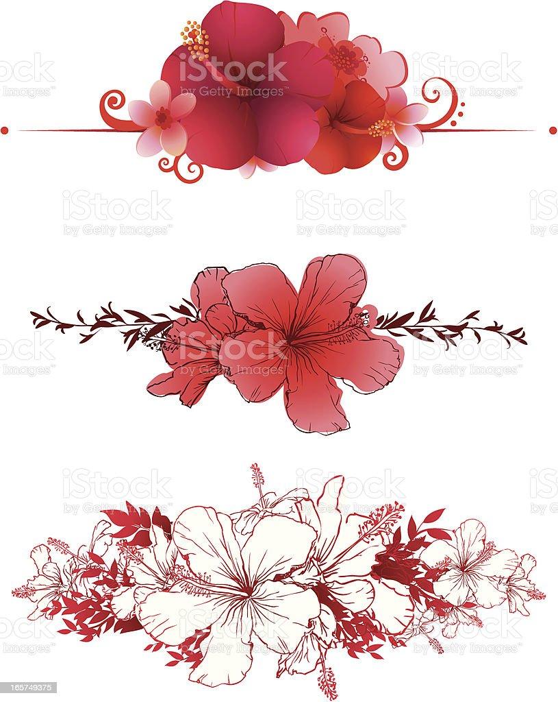 Hibiscus banners vector art illustration