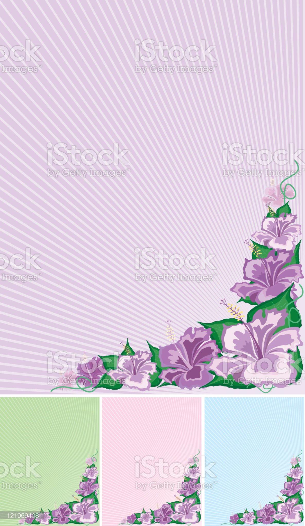Hibiscus design elements royalty-free stock vector art