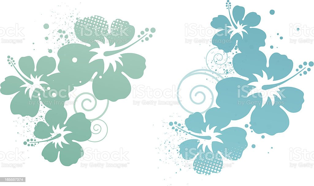 Hibiscus design elements vector art illustration