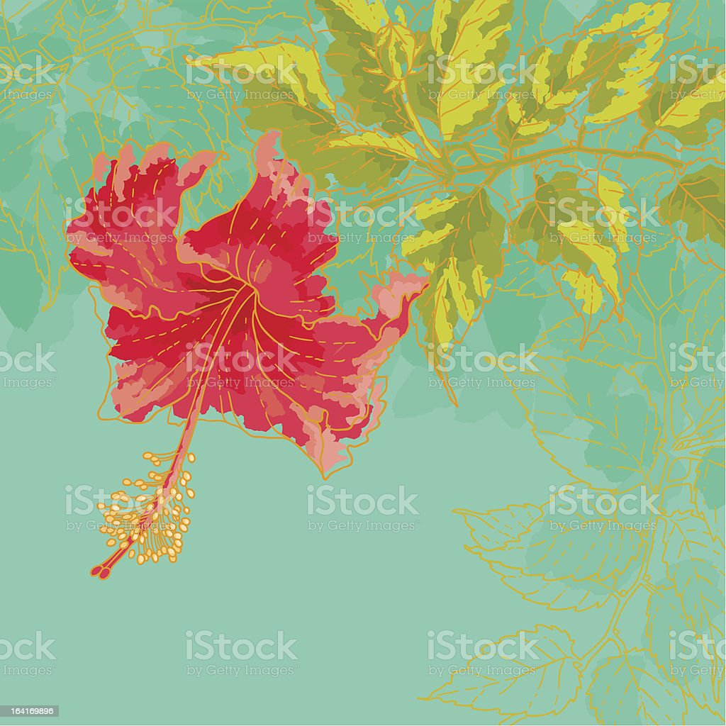 Hibiscus flower illustration on toned background royalty-free stock vector art
