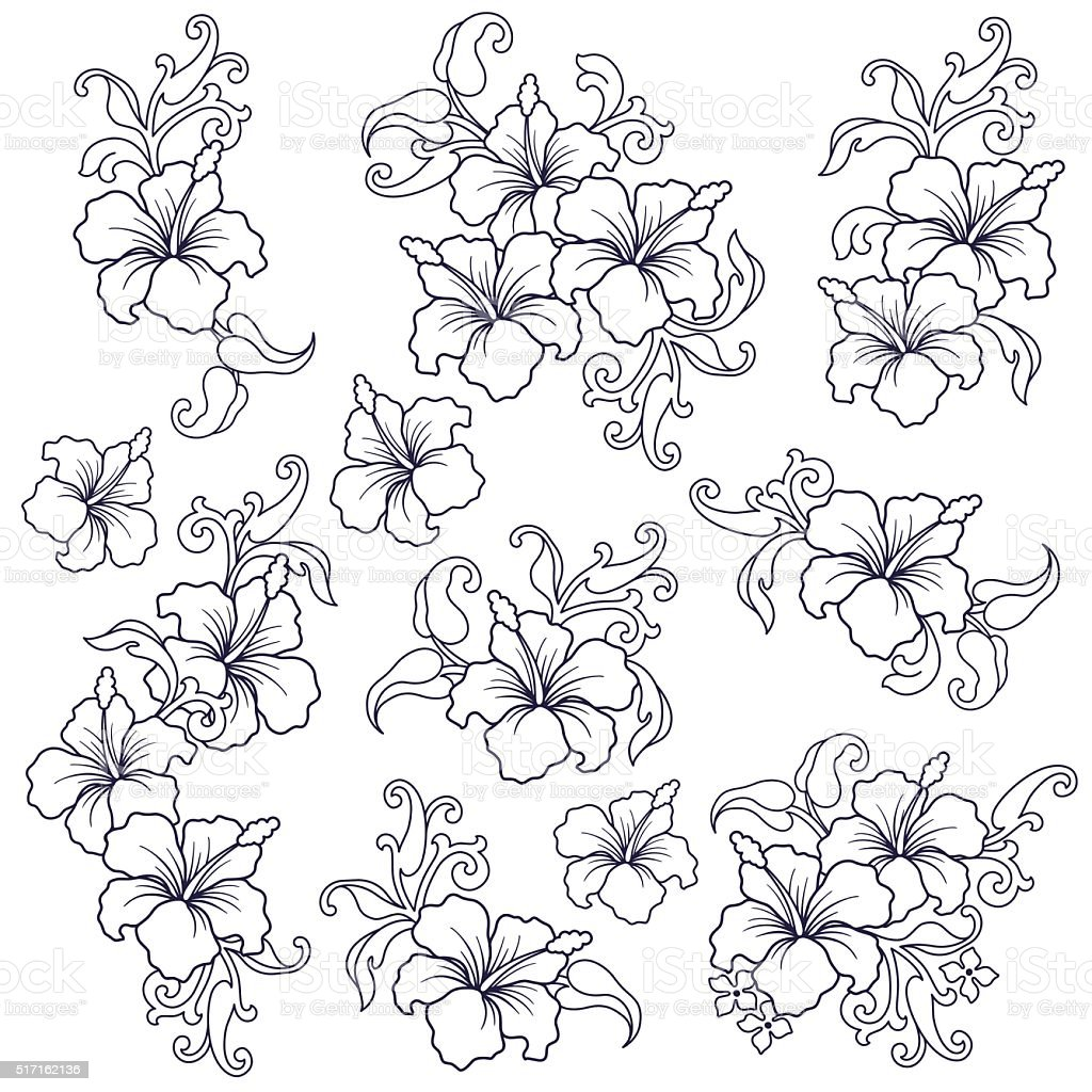 Hibiscus flower illustration vector art illustration