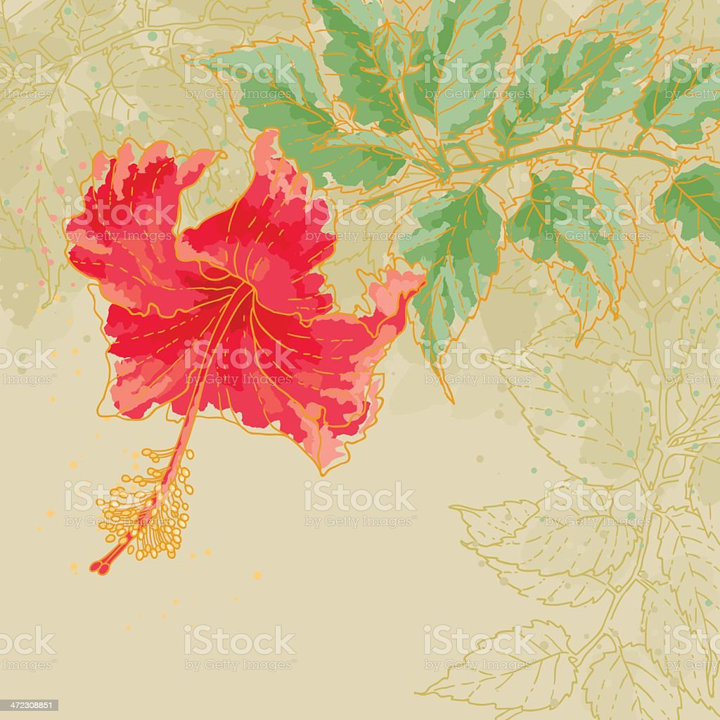 Hibiscus flower on toned background royalty-free stock vector art