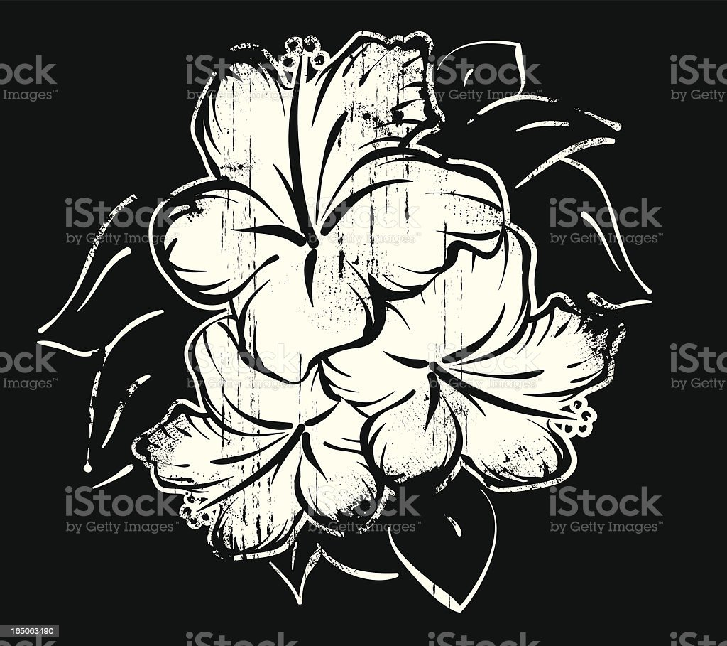 Hibiscus royalty-free stock vector art