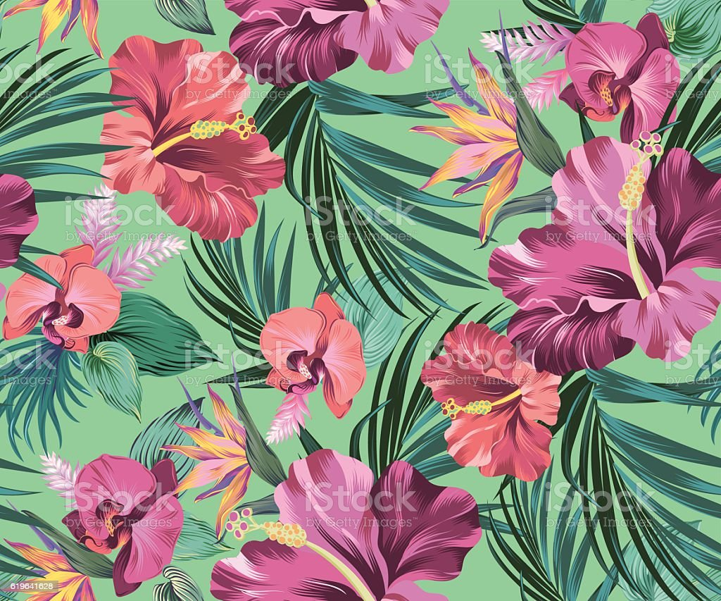 hibiscus vector pattern with amazing flowers vector art illustration