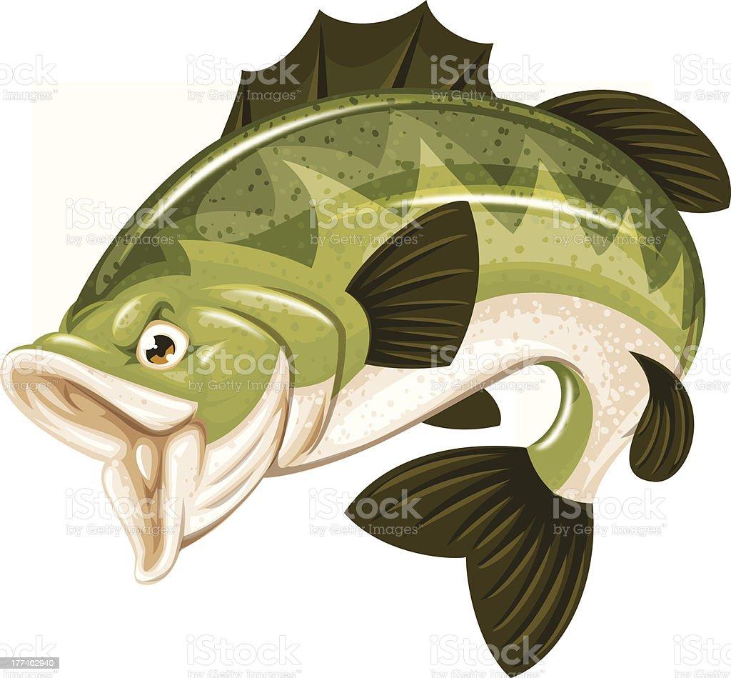 high detail bass vector art illustration