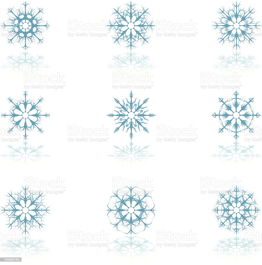Highly Detailed Floral Snowflakes Icons royalty-free stock vector art