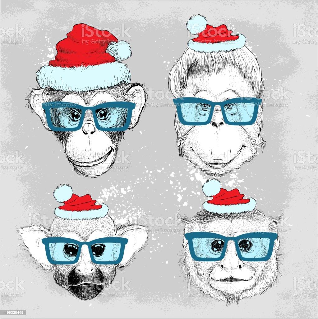 Hipster monkey faces set with blue glasses vector art illustration